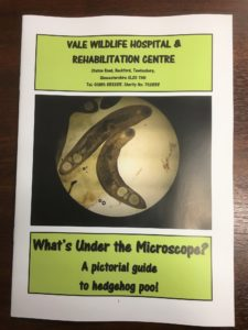 'What's Under the Microscope' Book